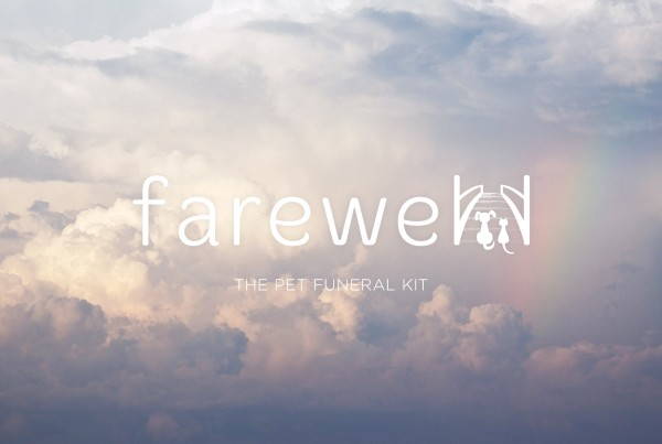farewell pet funeral kit logo in white over image of clouds and rainbow, rainbow bridge, illustration of dog and car at foot of bridge, branding, logo design, workbook design